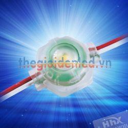 LED đúc đế bằng HHX-20171F-50T