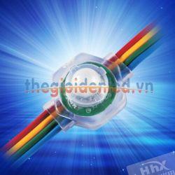 LED đúc đế bẳng HHX-2091RGBF-50T