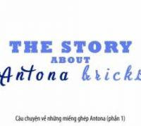 Miếng ghép ANTONA - Stop Motion