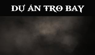 Tro bay