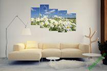 Tranh cánh đồng hoa cúc Họa mi trắng đẹp ấn tượng AmiA 381