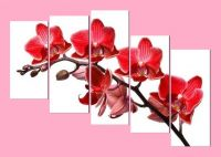 Tranh nhành lan hồ điệp màu đỏ ghép bộ đẹp AmiA 369
