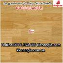 Gạch vân gỗ mờ Đồng Tâm 4040GOSAN001