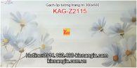 Gạch trang trí phòng khách,WC 30X60 KAG-Z2115