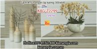 Gạch KTS trang trí ốp tường 300x600 KAG-Z2299