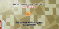 Gạch Đồng Tâm men mờ ốp tường 3060COTTON005
