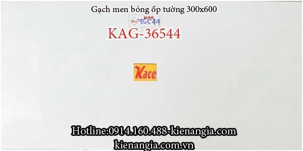 Gạch men bóng ốp tường 30x60 KAG-36544
