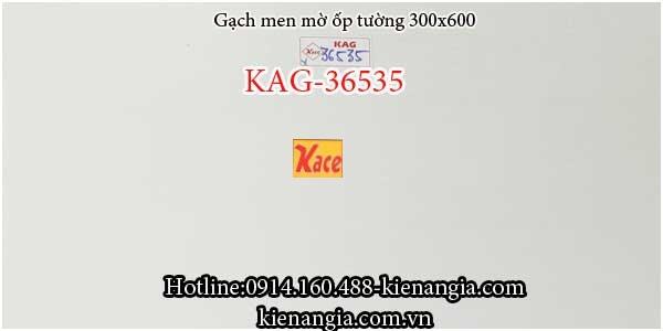 Gạch men bóng ốp tường 30x60 KAG-36535