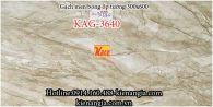 Gạch men bóng ốp tường 30x60 KAG-36540