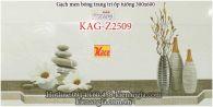 Gạch trang trí ốp tường 30x60 KAG-Z2509