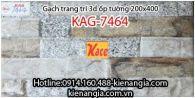 Gạch 3D bóng trang trí ốp tường 200x400 KAG-7464
