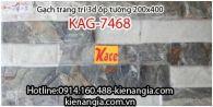 Gạch 3D bóng trang trí ốp tường 200x400 KAG-7468