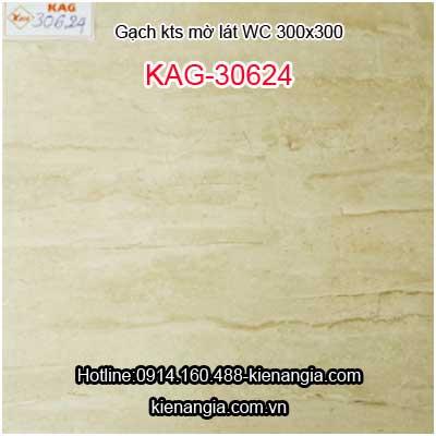 Gạch mờ không trơn lát WC 300X300 KAG-30624