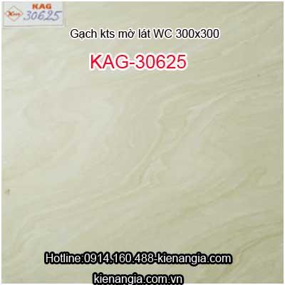 Gạch mờ không trơn lát WC 300X300 KAG-30625