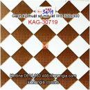 Gạch kỹ thuật số mờ 30x30 lát WC KAG-30179