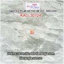 Gạch kỹ thuật số mờ 30x30 lát WC KAG-30724