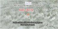Gạch ốp tường men bóng 30x60 KAG-36732