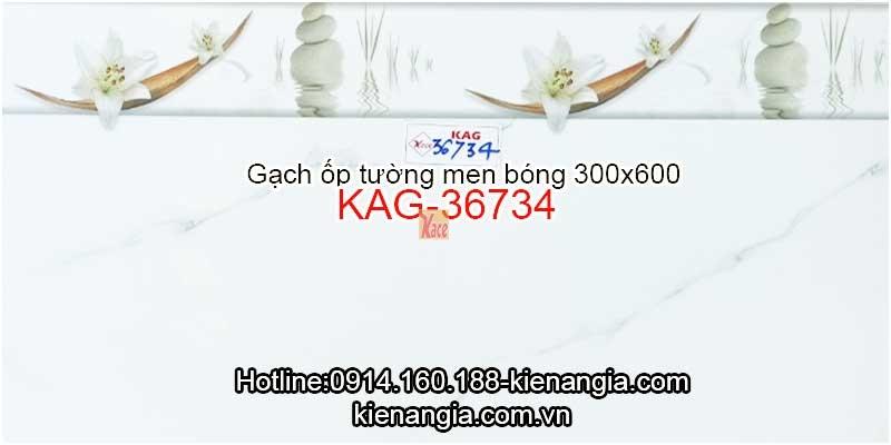Gạch ốp tường men bóng 30x60 KAG-36734