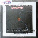 Gạch bông trang trí ốp lát phòng karaoke 20x20 KAG-P219