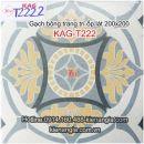 Gạch bông trang trí ốp lát căn hộ 20x20 KAG-T222