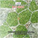 Gạch 3D nhám 50x50 lát sân KAG-50023