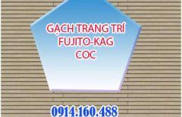GẠCH NỘI THẤT PHÒNG KHÁCH FUJITO-KAG-COC