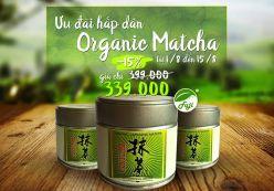 Bột Trà Xanh Organic Matcha Nhật Bản