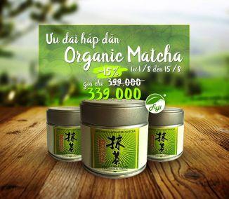 Trà Xanh Organic Matcha