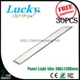 Đèn LED downlight tấm panel 40W 300x1200mm