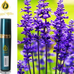 Oải Hương - Lavender Oil