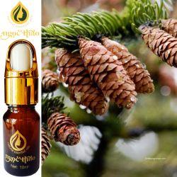 Tinh dầu Thông - Pine Oil