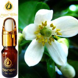 Tinh dầu Hoa Bưởi - Grapefruit flowers oil