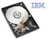 IBM 300GB 3.5in SL HS 15K 6Gbps SAS HDD (44W2234)