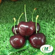 Cherry New Zealand Size 32+