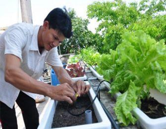 Vườn rau sạch thu về bạc tỷ của kỹ sư Nguyễn Văn Cao