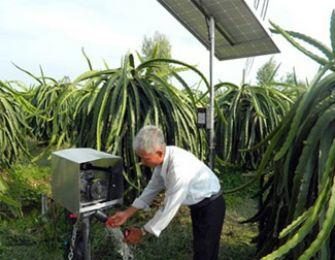 Hệ thống tưới nhỏ giọt bằng năng lượng mặt trời ở Tiền Giang