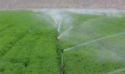 Ứng dụng công nghệ tưới phun mưa tại đảo Lý Sơn – Ứng dụng mới
