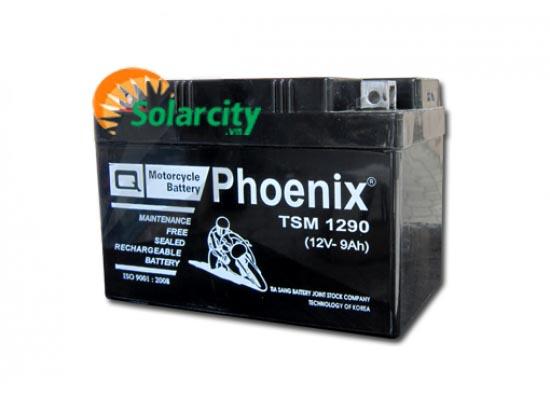 Ắc quy Phoenix 12V-9AH ( TSM 1290)