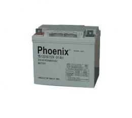 Ắc quy Phoenix 12V-40AH (TS12400)