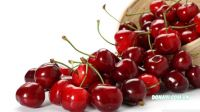 Cherry Chile