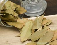 Lá nguyệt quế - Bay leaves