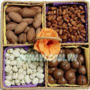 Giỏ hạt dinh dưỡng 4 ngăn