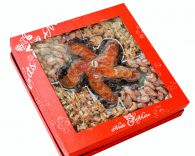 Hộp quà hạt dinh dưỡng hộp vuông hoa mơ 5 cánh HV5