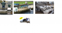 Máy đếm số lượng cá trong ao, hồ, đầm, ..
