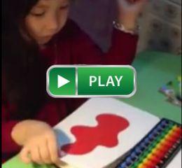 Bé Thỏ học Thế giới xung quanh 300 thẻ Glenn Doman Shop