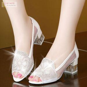 Giày nữ thời trang phong cách Hàn
