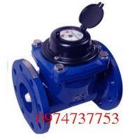 Đồng hồ nước VT-MINOX DN50