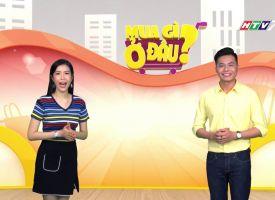 Kênh HTV7 nói về đồng hồ JULIUS