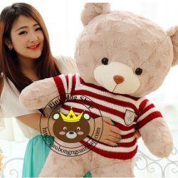 Gấu bông Teddy Avis (80cm)