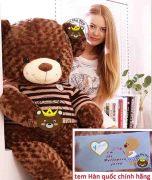 Gấu bông Teddy Choco to bự khổng lồ (90cm, 1m2, 1m4, 1m8, 2m)